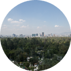 AltCity CDMX: Capturing a portrait of the changing face of Mexico City Sandra Ciampone